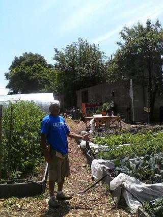 The Quintessential Black Farmer: Marathon Master St Farm