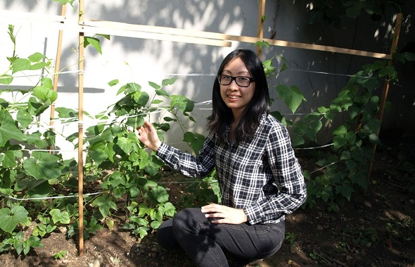 Volunteer Spotlight: Stephanie Chan