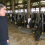 "Milk Cows, Not Workers: An Ithaca Forum on the ""Milked"" Report"